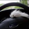 Photo: Ujeżdżanie mojej foki :)