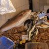 Photo: No i jeszcze posiłek... wizyta na targu rybnym.