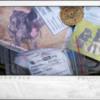 Photo: Krecie spotkanie w schronisku dla zwierząt