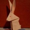 królik w domu :)