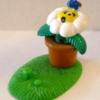 Biedronka na kwiatku
