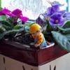 Photo: Bob pracuje w ogródku. ;)
