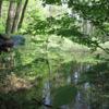 Photo: O, jakie fajne leśne jeziorko, w sam raz dla mnie