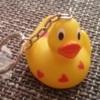 die kleine Ente zum Beginn ihrer Reise