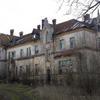 Photo: Sowa z Nałęczowa w OP9487