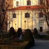 Photo: Sowa z Nałęczowa w OP5E64