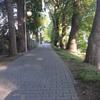 Photo: Sowa z Nałęczowa w GC5XQX9