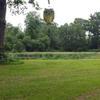 Photo: Przypałacowy park