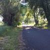 Photo: Sowa z Nałęczowa w  OP7D1B