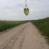 Photo: Sowa z Nałęczowa w GC8D4PM