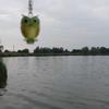 Photo: Sowa z Nałęczowa w OP7CFC