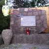 Photo: Sowa z Nałęczowa w  OP8079