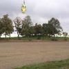 Photo: Sowa z Nałęczowa w OP1D21