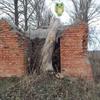 Photo: Sowa z Nałęczowa w OP9AKP