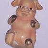 PIG M2021